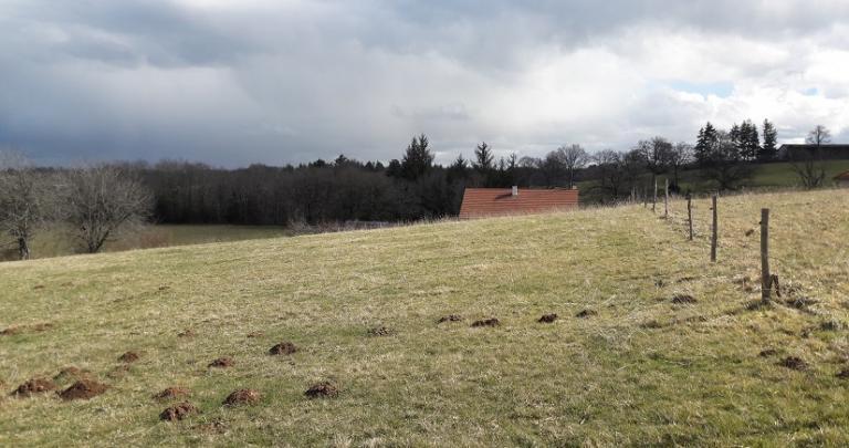 Grand terrain proche Aurillac