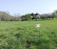 terrain à vendre bétaille